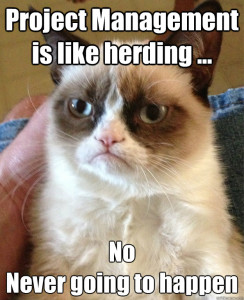 Grumpy Cat Knows